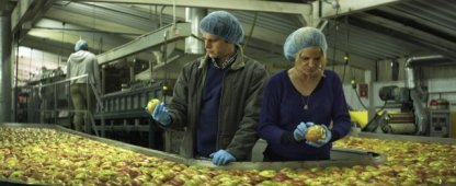 """It's like they say, """"Over 300 apples a day will make somebody go freakin' crazy."""""""